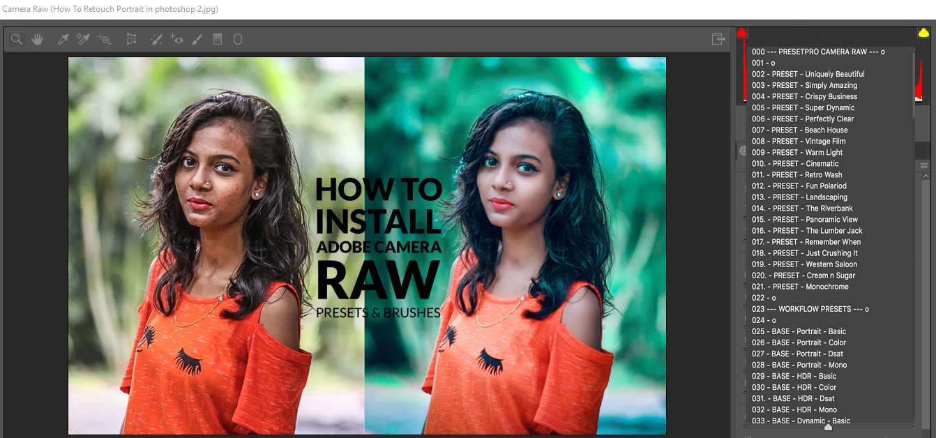 camera raw plugin for photoshop cc 2017 free download