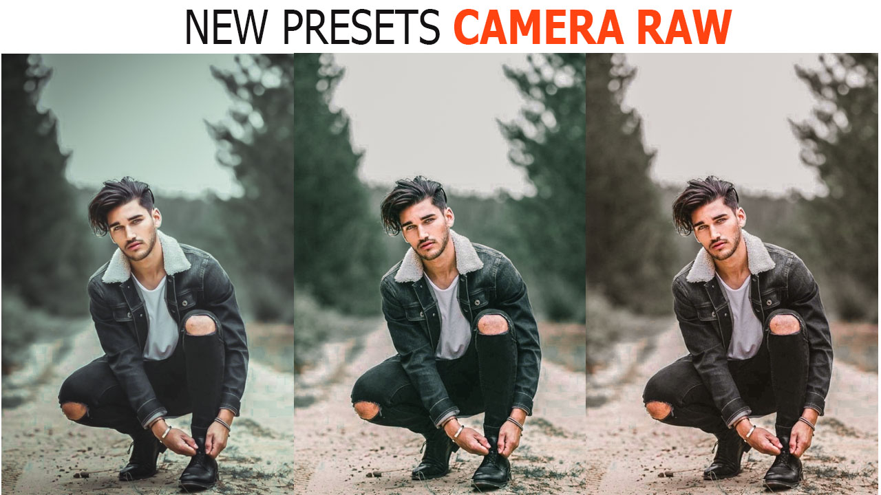 Moody Photoshop Camera Raw Presets collection
