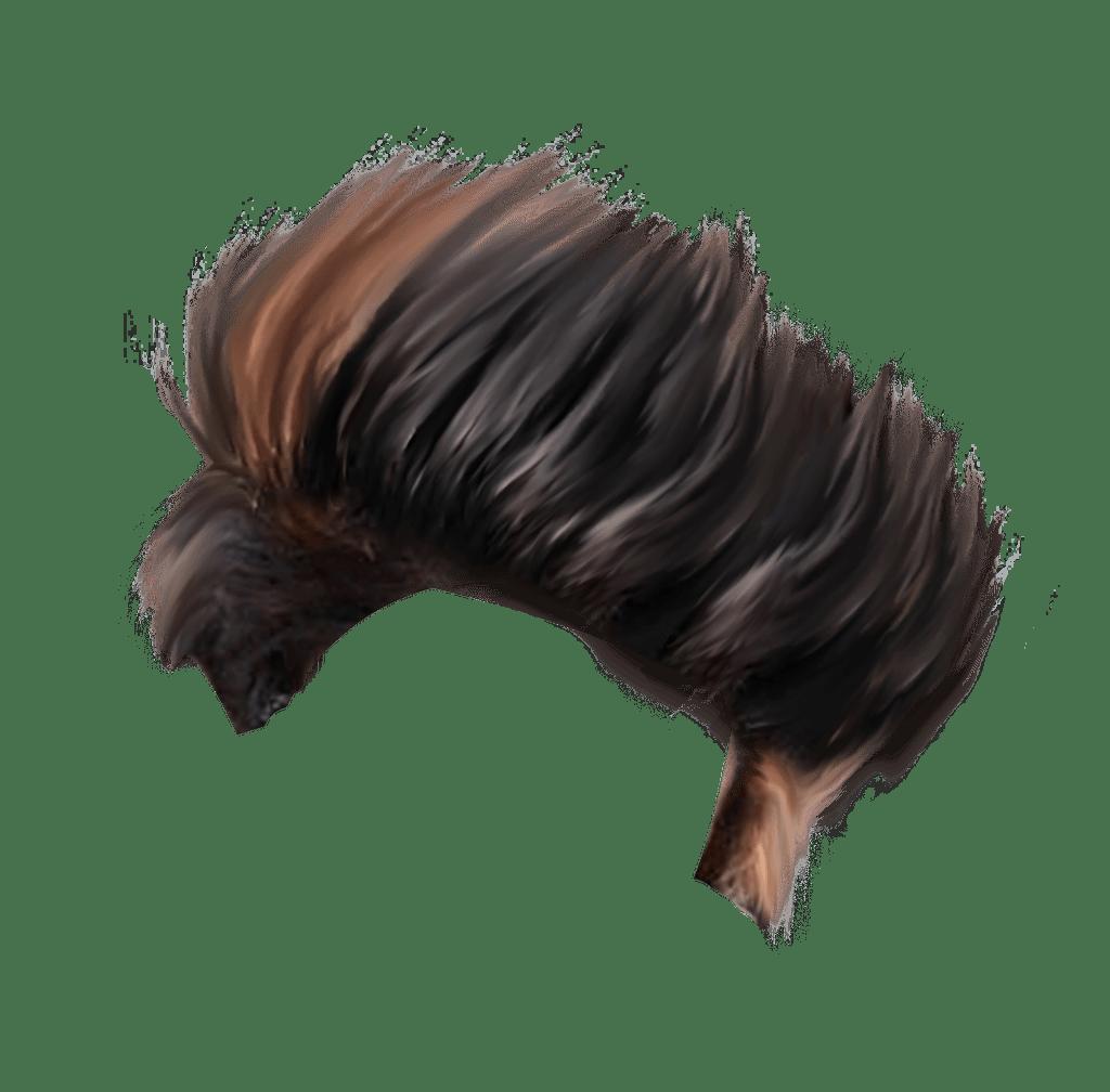 Download Hair: New Cb Editing Hair Png 2019